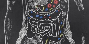 Bacteria is going through a human's digestive system